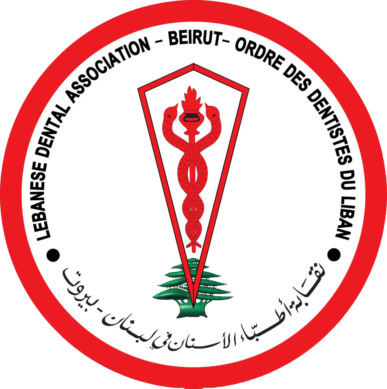 Lebanese Dental Association